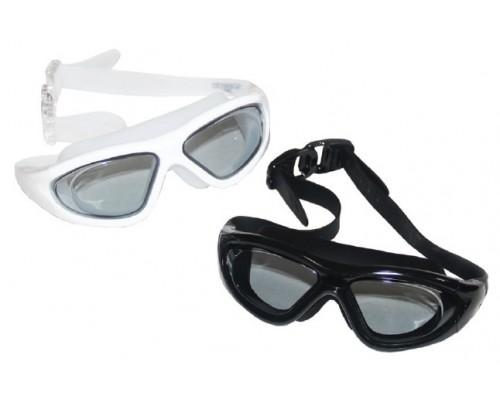 Goggles (Swimming Accessories)